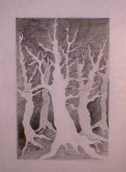 рисунок - деревья