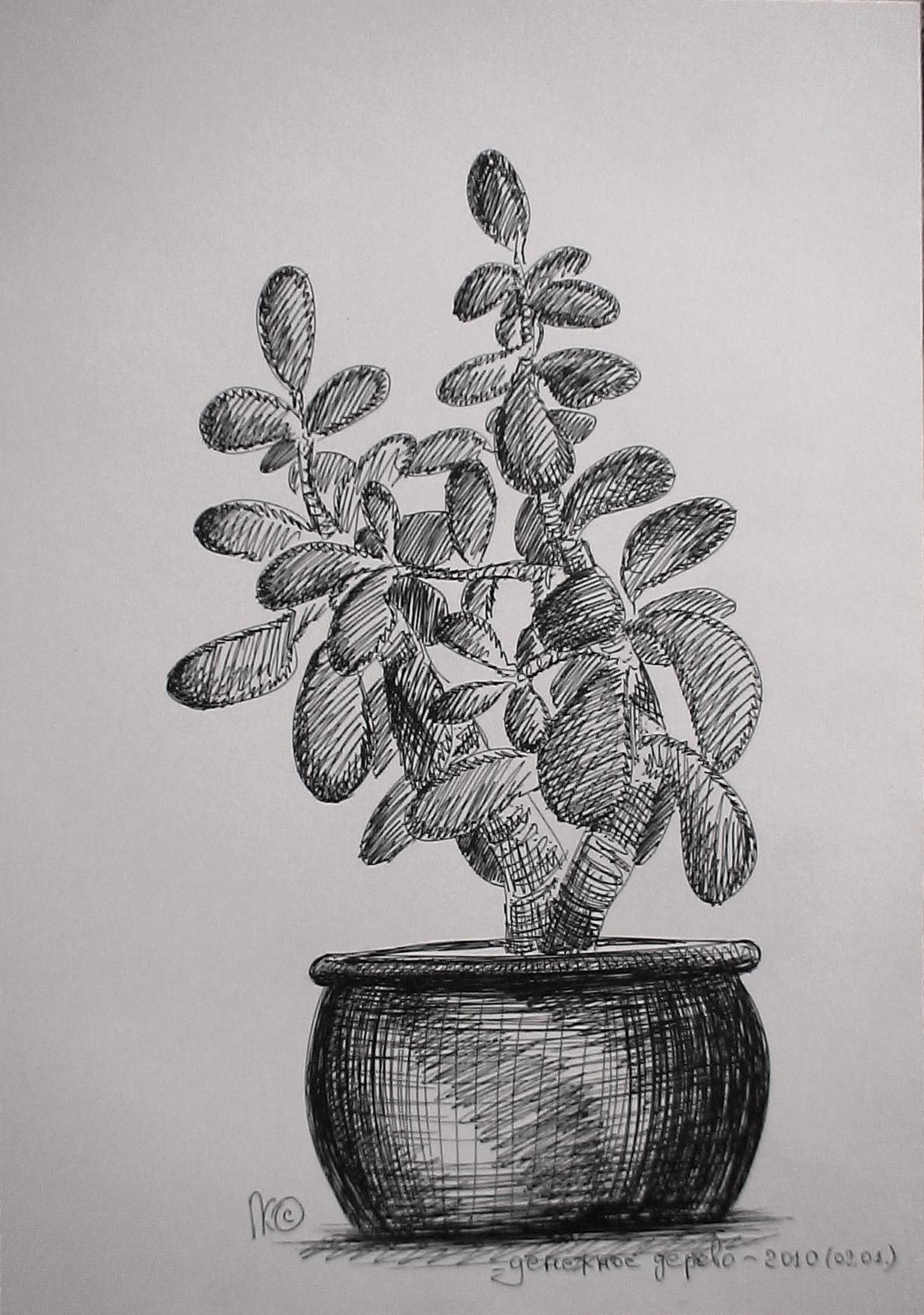Толстянка-денежное дерево, гелевая ручка, бумага, А4