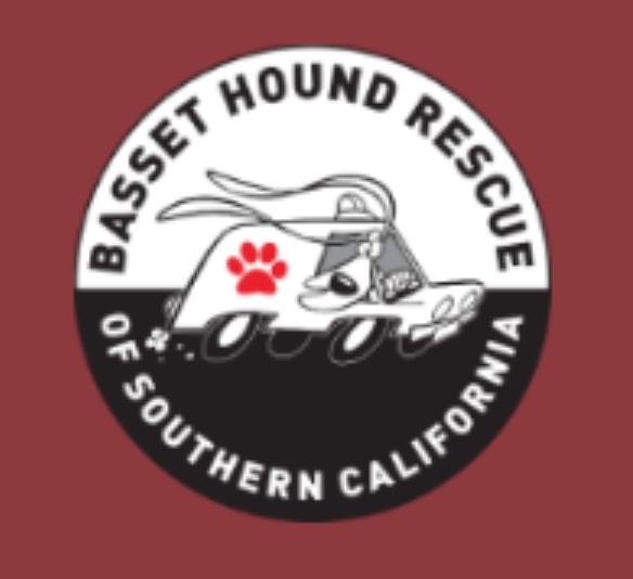 Basset hound Rescue