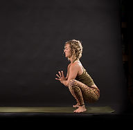 private yoga sonoma county; wine country yoga; yoga with kelliann; private group yoga sonoma county