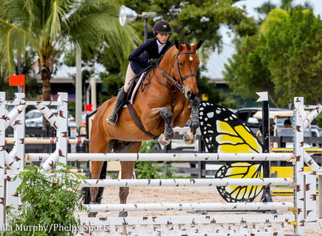 Hallie Grimes and Juice Wrld Secure Platinum Performance/USEF Show Jumping Talent Search 2* Win at W