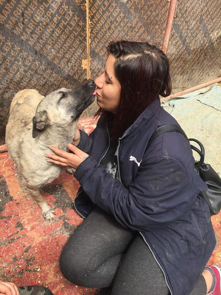 Reunited with rescuer Sue