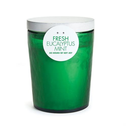 Fresh Soy Candle- Eucalyptus Mint