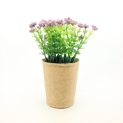 Spring flowers- Purple