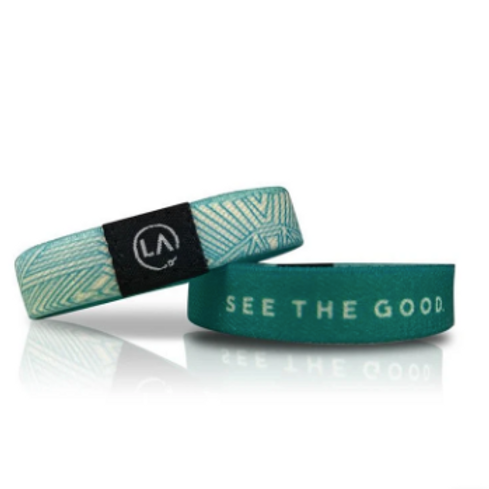 See The Good Refocus Band