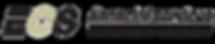 ECS Financial Services Logo