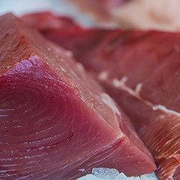Fresh Yellow Fin Tuna 3.5 lbs