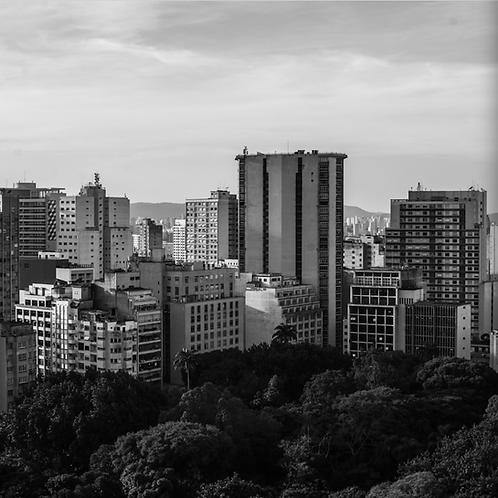 Panorama SP