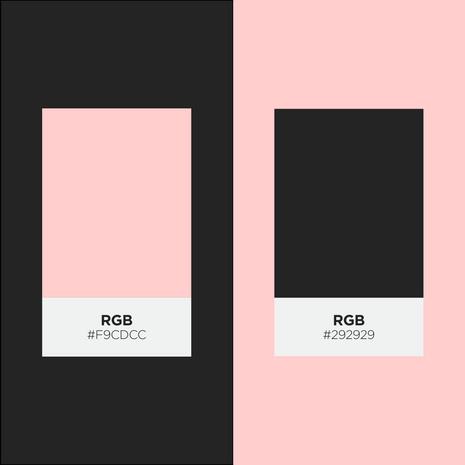 paleta-de-cores.png