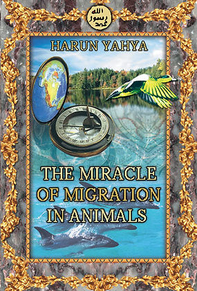 The Miracle Of Migration In Animals