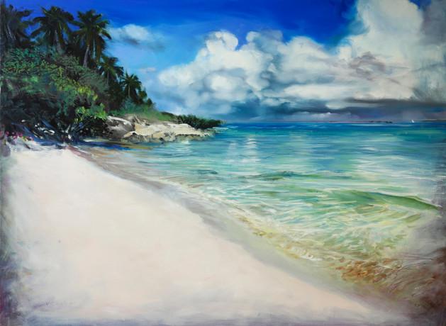 Tropic Shores  oil  30x40 sm.jpg