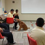 A therapy dog visits McAdams