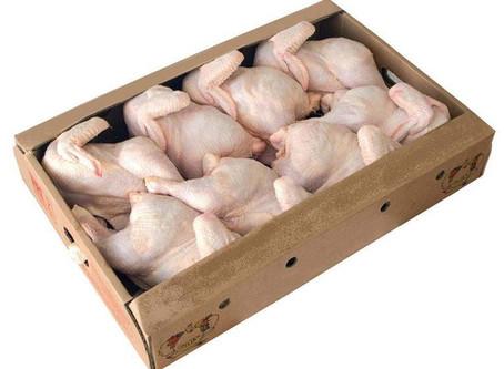 Islamic Halal Wholesale Frozen Chicken