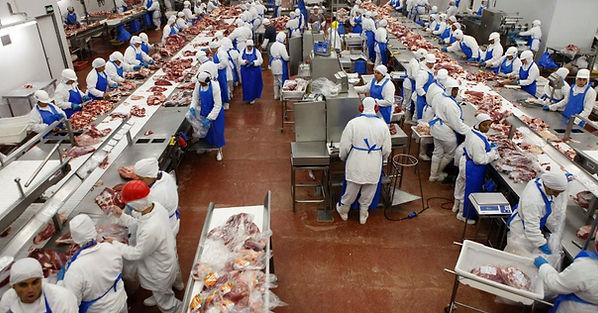 Import Frozen Chicken - Frozen Food Distributor