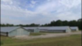 SIF 103 farm
