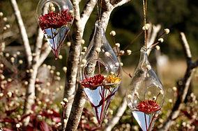 GlassDrops.jpg