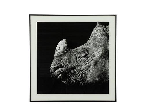 Tableau rhinocéros