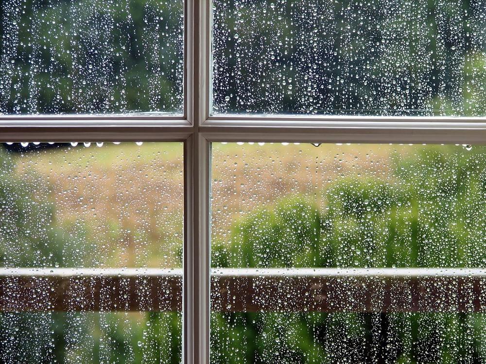 שהגשם בא!!