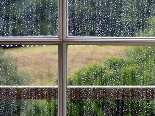 ?גשם גשם בוא