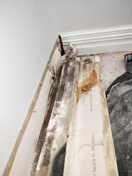 Water Damage, mould.