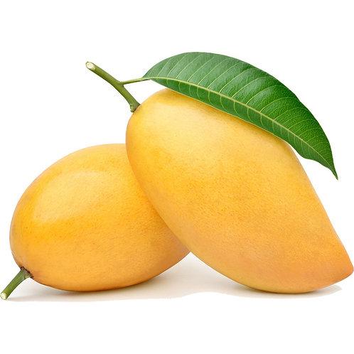 Mangue pakistanaise