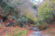 猿尾滝2.jpg
