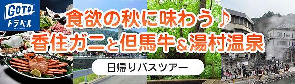 日帰りツアーバナー.jpg
