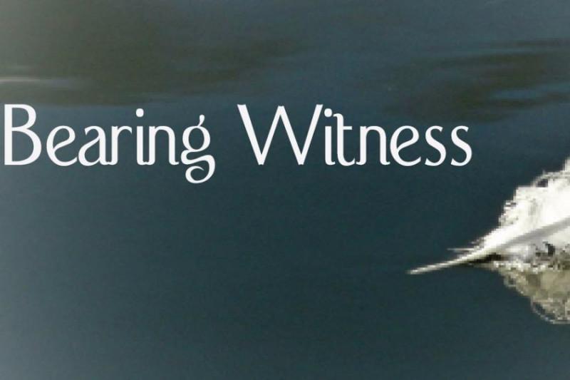 A Global Witness