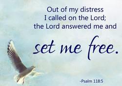 Shalom and Freedom