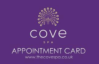 Cove Spa 2014 APPT CARD.jpg