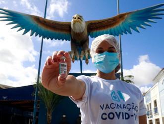 ONG internacional fará investimentos e posto de vacinação na quadra da Portela será ampliado