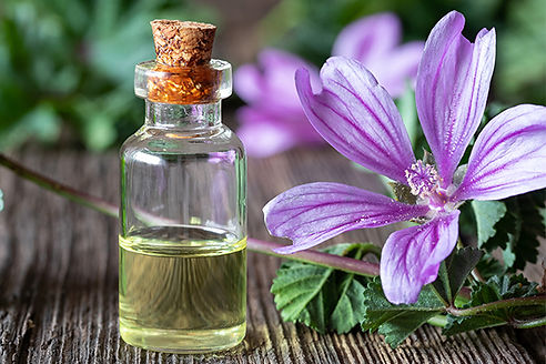 Flower-Essence-Home-Box-1.jpg