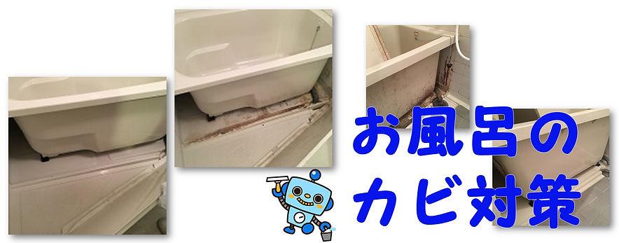 お風呂のカビの原因とカビない秘訣を解説します