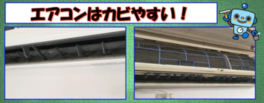 エアコン内部のカビは放っておくと増えていきます。黒い粒はカビであることが多いです