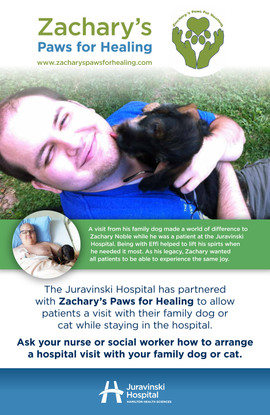 Zacharys Paws for Healing Poster 01 (3).jpg