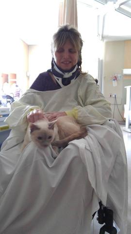 Cat visit.jpg