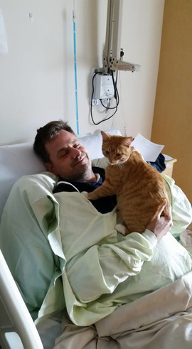 stem cell and cat.jpg