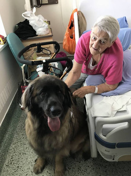 Maggie visiting patients