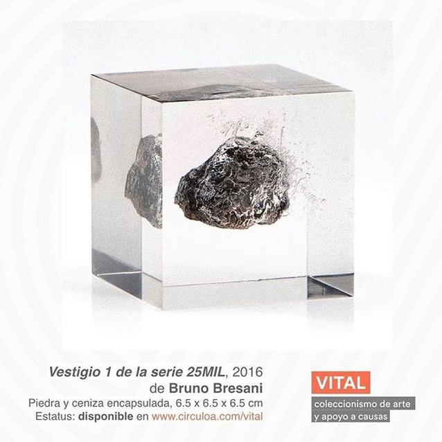 Vestigio 1 de la serie 25MIL, 2016, Brun