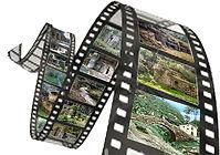 pellicola-cinema.jpg