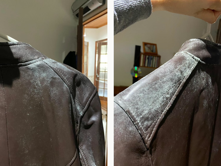 Como limpar bolor de um casaco de pele