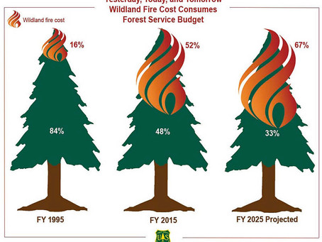 Forest Management Should Fund Firefighting