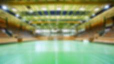 Спортивная арена Kreuzbleiche теплоизоированная пеностеклом