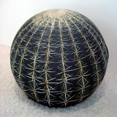 BALERI / TATINO cactus