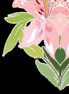 Flor-C.png