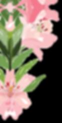 Flor-B.png