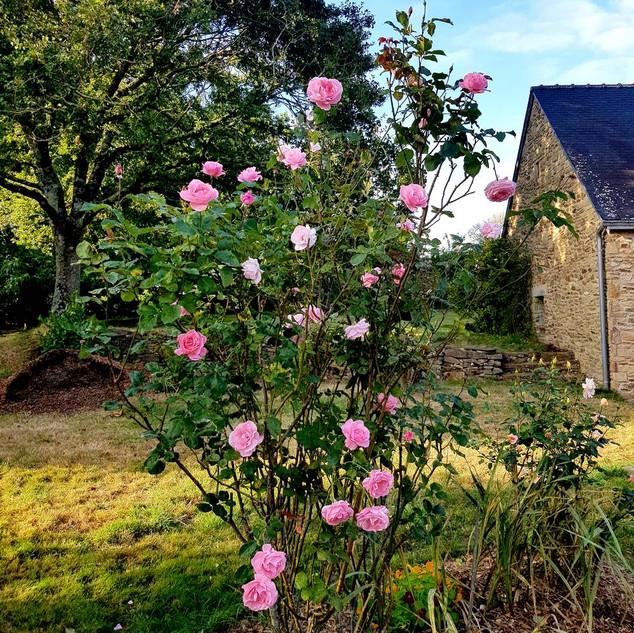 Une chambre d'hôtes au calme dans le Morbihan