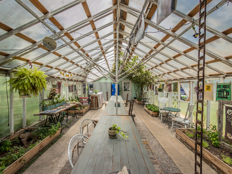 The Green House on Porter - Unlike any shop Ocean Springs has ever seen.