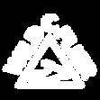 WILD FLIER _ Logo-04.png