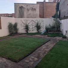 plantations, pelouse, déco